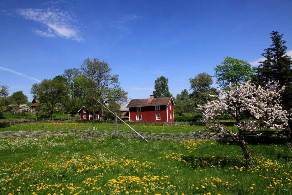 Röda hus med vita knutar i Åsens By Småland