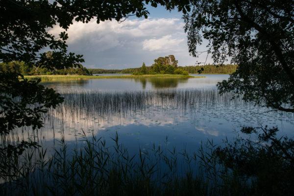 Vy över nationalparken Åsnen, skärgårdsliknande miljö mitt i Småland
