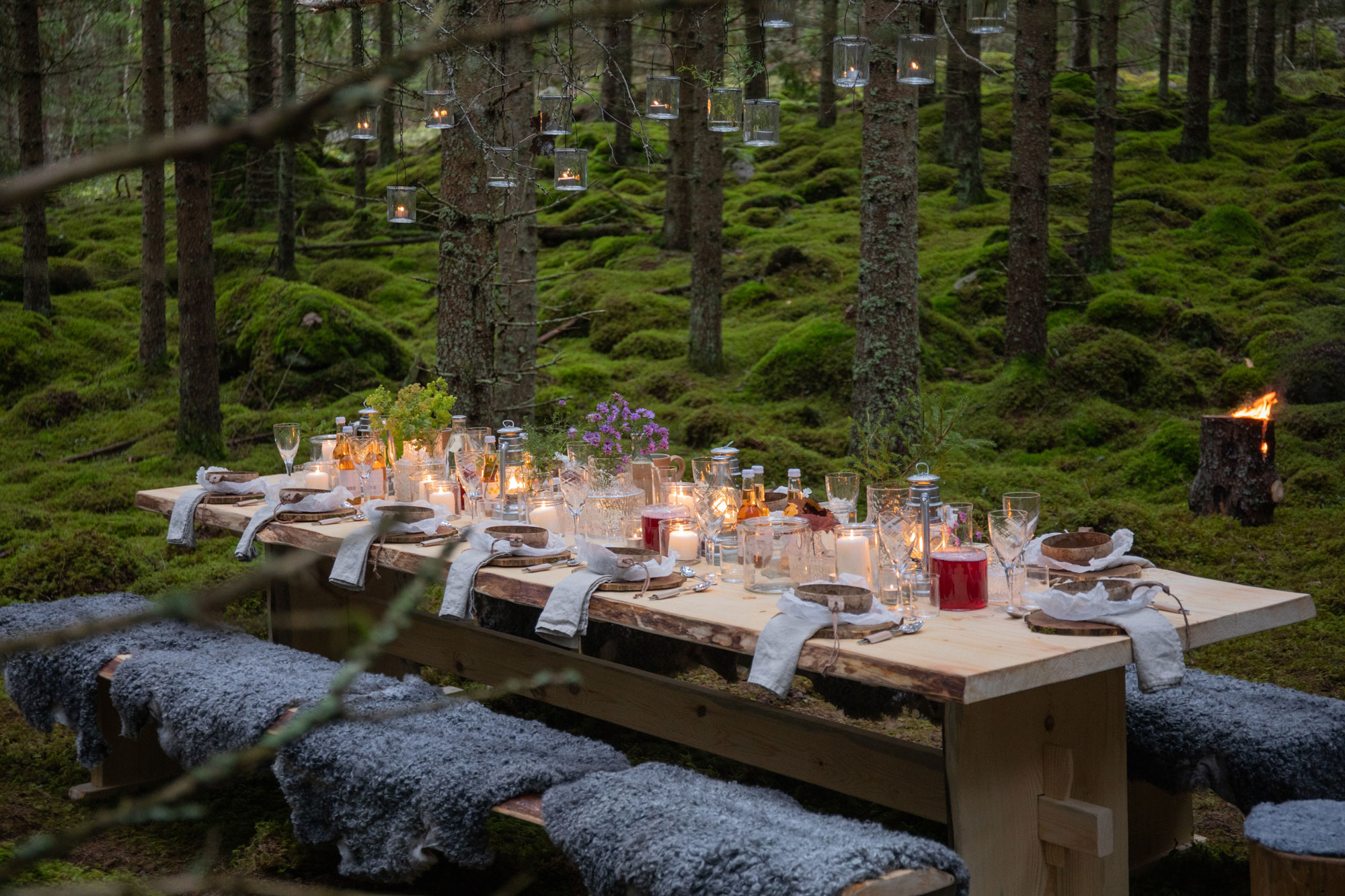 Uppdukat bord mitt i den småländska skogen, The Edible Country
