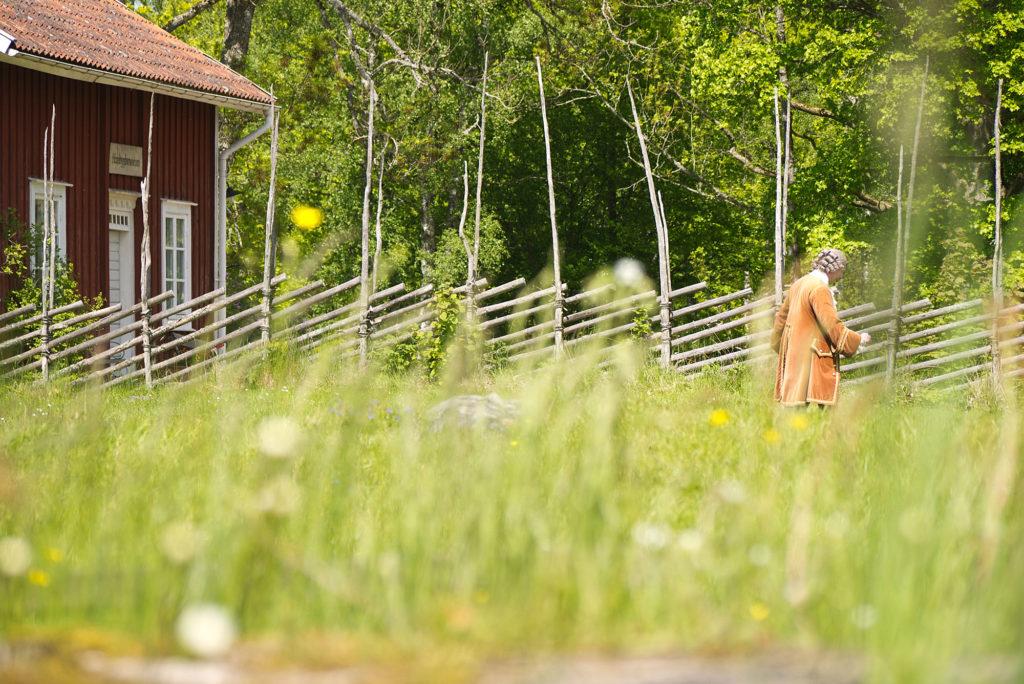 Linnés Råshult har bevarat Carl von Linnés hem, skådespelare spelar Linné på en äng